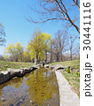 春先の公園と小川 30441116