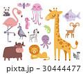 Cute zoo cartoon animals isolated funny wildlife 30444477