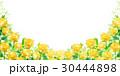 父の日 バラ 花 背景 30444898