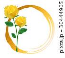 父の日 バラ 黄バラのイラスト 30444905