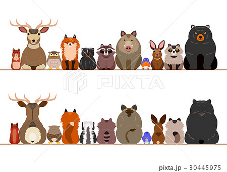 森の動物たちのボーダーのイラスト素材 30445975 Pixta