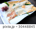 イカの活き作り 活き作り イカの写真 30448845
