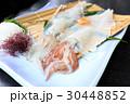 イカの活き作り 活き作り イカの写真 30448852