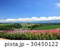 北海道 青空 美瑛の写真 30450122