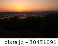 となみ夢の平展望台から見る散居村風景 30451091