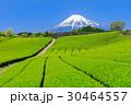 静岡_茶畑と富士山の絶景 30464557