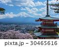 新倉山浅間公園五重塔と富士山と桜 30465616
