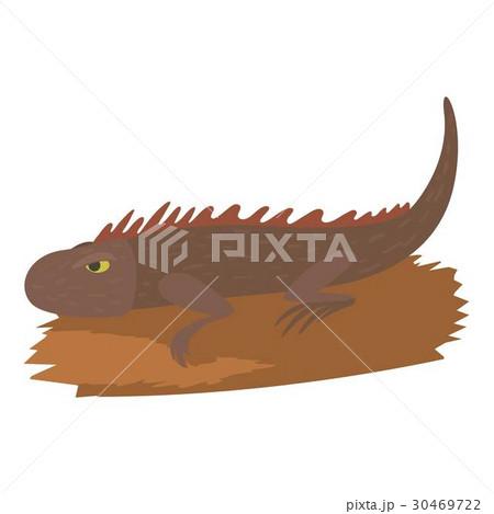 Iguana icon, cartoon style 30469722