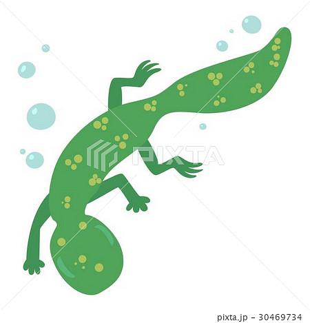 Swimming lizard icon, cartoon style 30469734