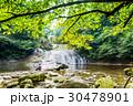 自然 清流 渓流の写真 30478901