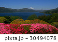Spring flowers and Mt. Fuji from Onshi Hakone Park 30494078