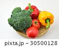 カラフル野菜 30500128