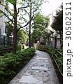 新宿遊歩道公園 30502511