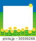 夏 向日葵 太陽 青空 30506266