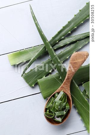 Aloe vera 30508255
