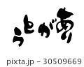 筆文字 ありがとう   thank you  感情 30509669