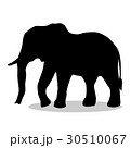 Elephant mammal black silhouette animal 30510067