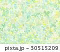 あじさい 背景素材 水彩のイラスト 30515209