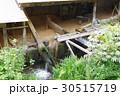 小鹿田焼 小鹿田 伝統工芸の写真 30515719