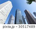 新宿高層ビルと街路樹7 30517489