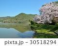 京都 広沢池 30518294