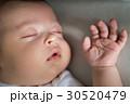 新生児 ベビー 赤ちゃんの写真 30520479