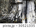 青龍洞 玄武岩 柱状節理の写真 30521335