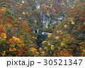 鳴子峡 紅葉 秋の写真 30521347