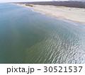 海と砂浜(空撮) 30521537