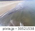 海と砂浜(空撮) 30521538