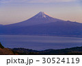 富士山 達磨山高原 世界遺産の写真 30524119