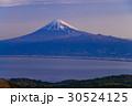 富士山 達磨山高原 世界遺産の写真 30524125