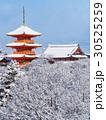 1月京都 清水寺 三重塔 経堂 雪景色 30525259
