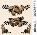 芽 蕾 花の蕾のイラスト 30526772