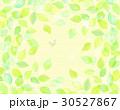 葉っぱフレーム 30527867