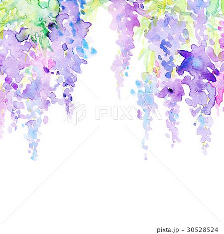 水彩 藤の花 テクスチャー 30528524