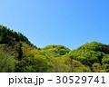 若葉芽吹く新緑の山と晴れ渡る青空 b-1 30529741