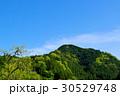 若葉芽吹く新緑の山と晴れ渡る青空 d-1 30529748