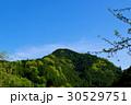 若葉芽吹く新緑の山と晴れ渡る青空 d-3 30529751