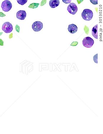 水彩 ブルーベリー テクスチャーのイラスト素材 [30530210] - PIXTA