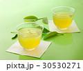 お茶 緑茶  30530271