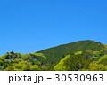 若葉芽吹く新緑の山と晴れ渡る青空 山腹の集落 中望遠 30530963