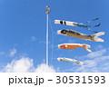 鯉のぼり 30531593