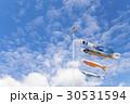 鯉のぼり 30531594