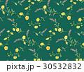 花 花柄 パターンのイラスト 30532832