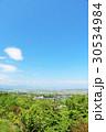 岐阜県 青空と新緑の風景 30534984