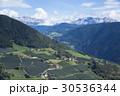 イタリアの畑 30536344