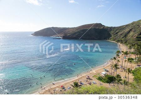 ハワイのビーチ 30536348