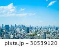 東京風景 30539120