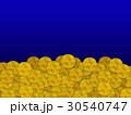 ビットコイン コイン 仮想通貨のイラスト 30540747